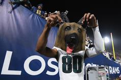 Eagles Fan Accused Of Putting Dog In Microwave Following Playoff Loss