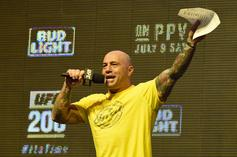 """Joe Rogan's Truck Vandalized By Cat Poop At LAX: """"These F*cking Cats Ain't Playing"""""""