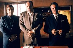 """The Sopranos"" New Scene Reveals Tony's Coronavirus Reaction"