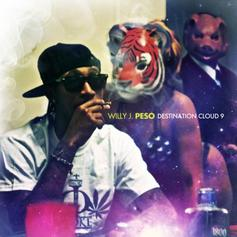 Willy J Peso - Destination Cloud 9