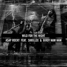 A$AP Rocky - Wild For The Night Feat. Skrillex