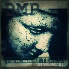 DMP - How Many Tears  Feat. Pusha T