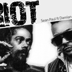 Sean Paul - Riot Feat. Damian Marley