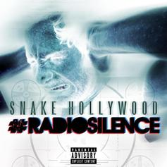 Snake Hollywood - Radio Silence