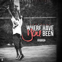 Tsu Surf - Where Have You Been
