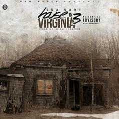 Tsu Surf - House In Virginia 3