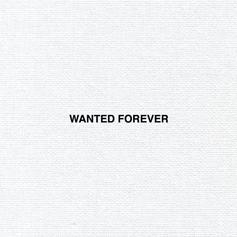 CJ Flemings - Wanted Forever