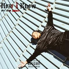 Ashoka - Now I Know Feat. Tim Gent (Prod. By Rascal)