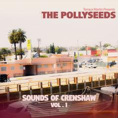 Terrace Martin & The Pollyseeds - Funny How Time Flies Feat. Robert Glasper