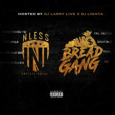 """MoneyBagg Yo Delivers Compilation Project """"NLESS ENT x Bread Gang"""""""