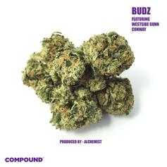 "Westside Gunn & Conway Team Up For New Alchemist-Produced Song ""Budz"""