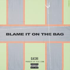 "GASHI Releases New Single ""Blame It On The Bag"""