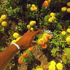 """Tyler, The Creator Drops Another Remix With """"Peach Fuzz"""""""