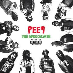 "Pro Era Re-Releases ""Peep The Aprocalypse"" With New Track"