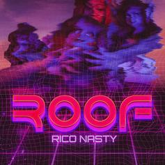 "Rico Nasty Taps Kenny Beats For New Track ""Roof"""