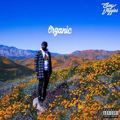 """Casey Veggies Weighs In On Thug Love With The Sweet Track """"Candy"""""""