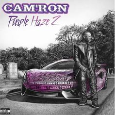 "Cam'ron Delivers ""Purple Haze 2"" Ft. Wale, Jim Jones, Max B, & More"