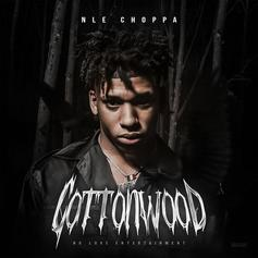 """NLE Choppa & Meek Mill Complete """"Cottonwood"""" Vibes With """"Cruze"""""""