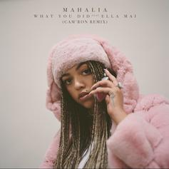 "Mahalia Links With Cam'ron On Remix Of Her Single ""What You Did"" Ft. Ella Mai"