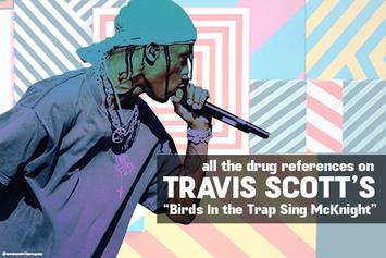 "All The Drug References On Travis Scott's ""Birds In The Trap Sing McKnight"""