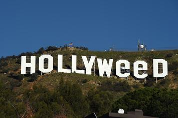 """Jesus Hands"" Believed To Be Behind The ""Hollyweed"" Sign"