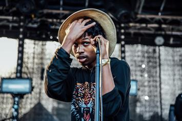Photos: Lauryn Hill, SZA, Raury, Lenny Kravitz & More Perform At Afropunk Fest 2015