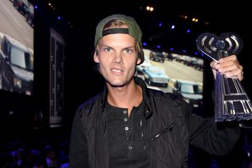 Avicii's Death Reportedly Had No Criminal Activity Or Foul Play