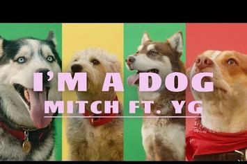 """YG & Mitch Are Surrounded By Furry Friends In """"I'm A Dog"""" Video"""