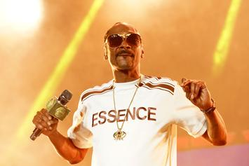 Snoop Dogg Sues Contractor For $500K For Allegedly Ruining Mansion Remodel