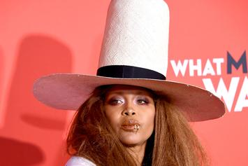 """Erykah Badu Questions Recent """"Outrage,"""" Twitter Jumps To Messy Conclusions"""
