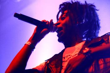 Danny Brown Announces New Album Executive Produced By Q-Tip