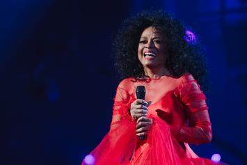 "Diana Ross Blasts Airport Security For Violation: ""Makes Me Want To Cry!"""