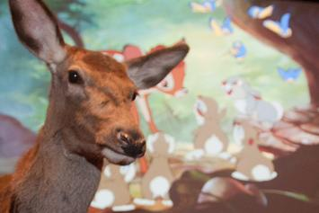 """Bambi"" Will Be The Next Disney Film To Get A Live-Action Remake"