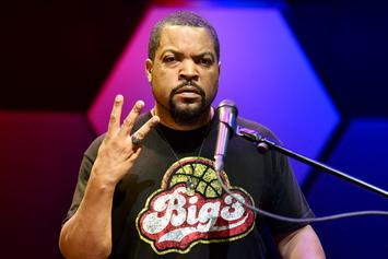Democrats Hit Back About Ice Cube's Supposed CWBA Claim