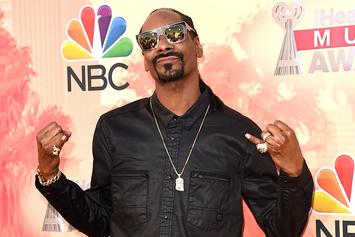 Snoop Dogg Contemplates Who Would Play Him In A Biopic